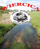 WIERCICA - Salmoklubowa rzeka