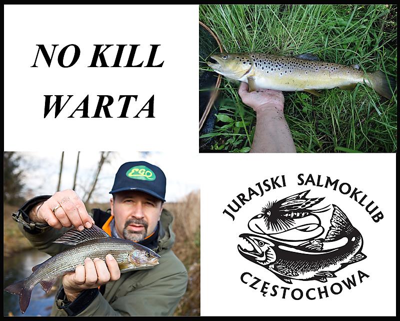 Kulisy powstania i funkcjonowania odcinka NO KILL- Warta.